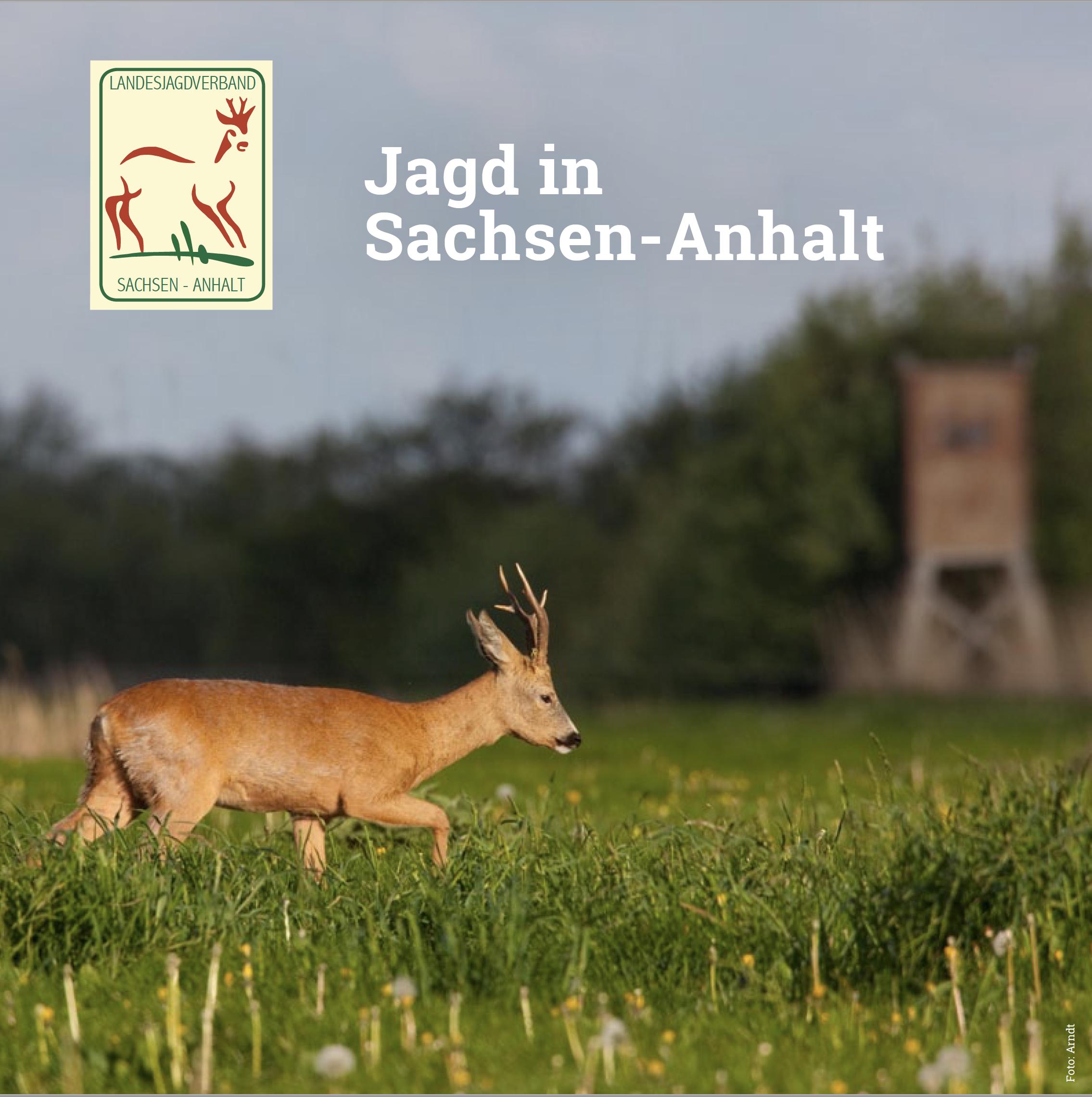 Jagd in Sachsen Anhalt