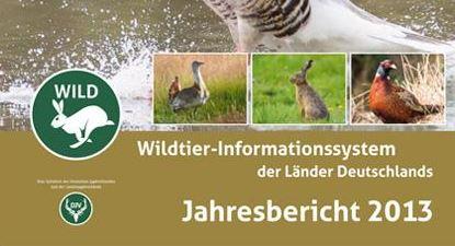 Wildbericht 2013 erschienen